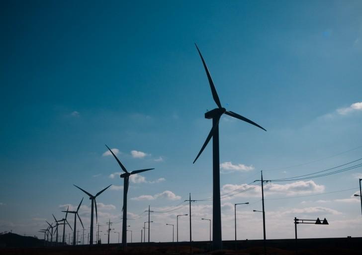 Niemcy – światowy lider produkcji energii wiatrowej
